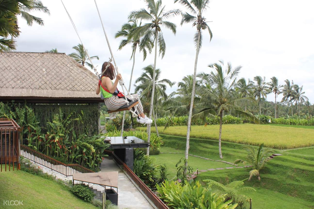 Secret Garden swing